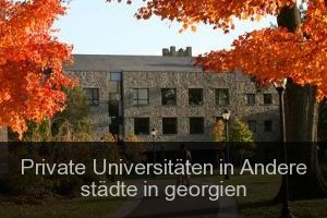 Private Universitäten in Andere städte in georgien